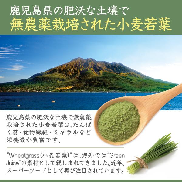 国産原料100%小麦若葉青汁紹介文1