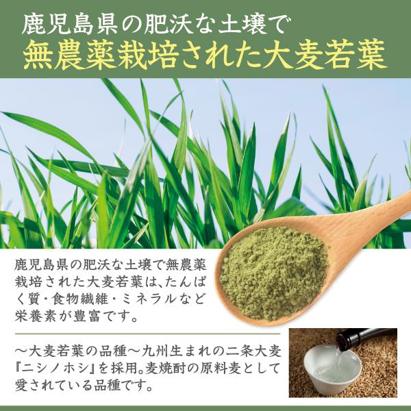 国産原料100%大麦若葉青汁紹介文1